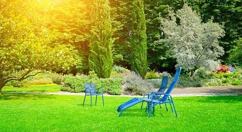 beautiful landscaped backyard with blue lawn furniture