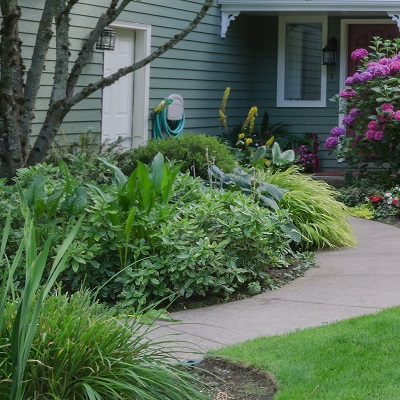 Bed weed treatment from ExperiGreen Lawn Care keeps your landscape beds looking great.
