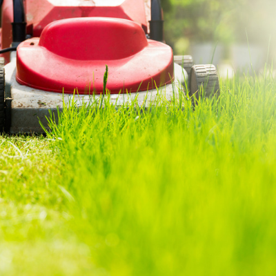 fall landscaping mow your lawn