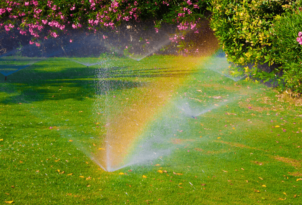Tips for Watering Your Lawn the Right Way