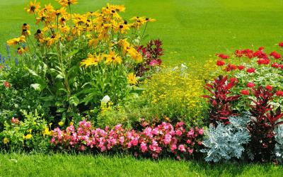 Maintaining Landscape Beds
