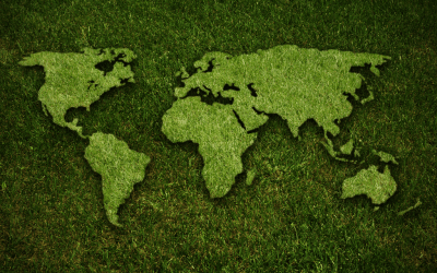 How Your Lawn Helps the Environment