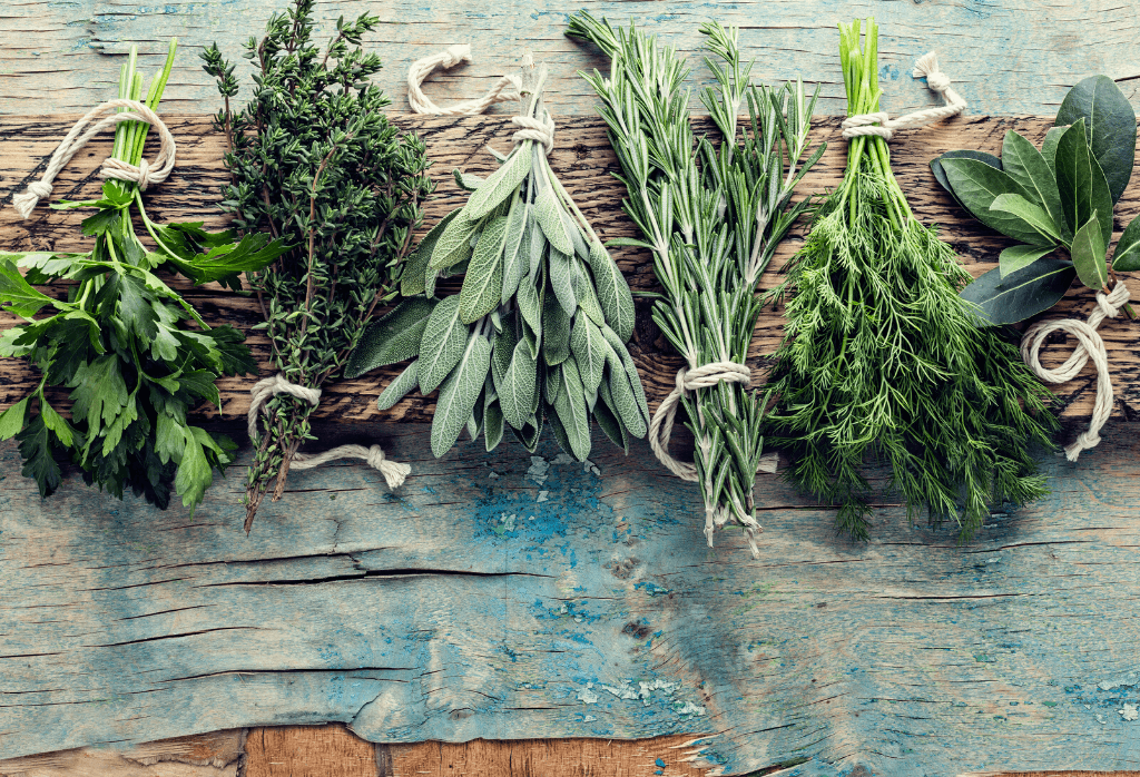 The Best Herbs to Grow at Home