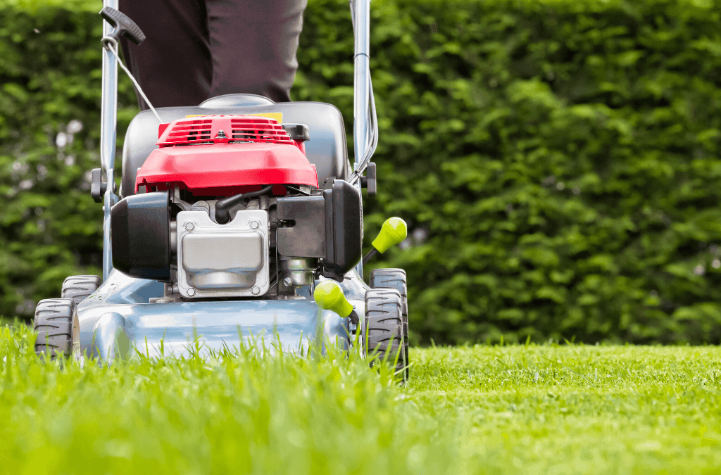 Why You Should Mow Tall