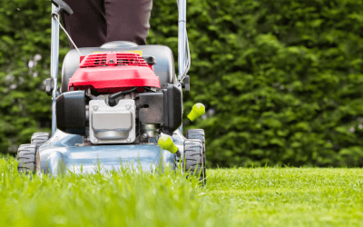 How Mower Height Affects Lawn Health