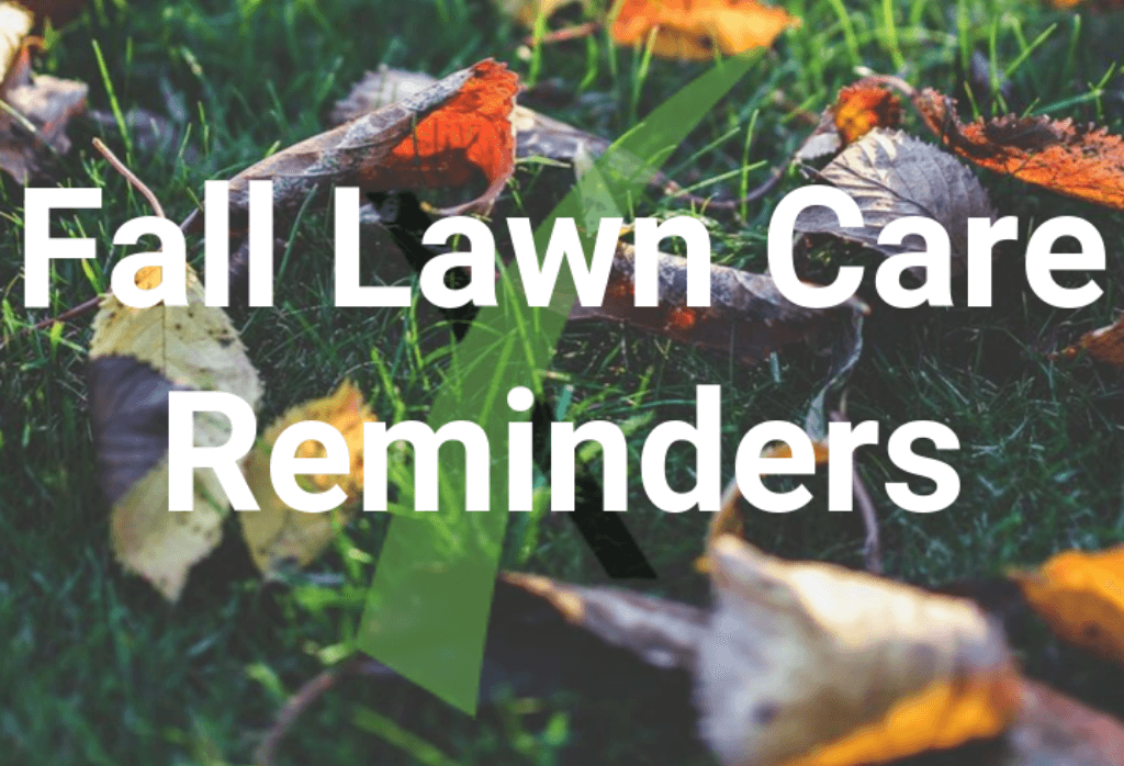 Fall Lawn Care Reminders
