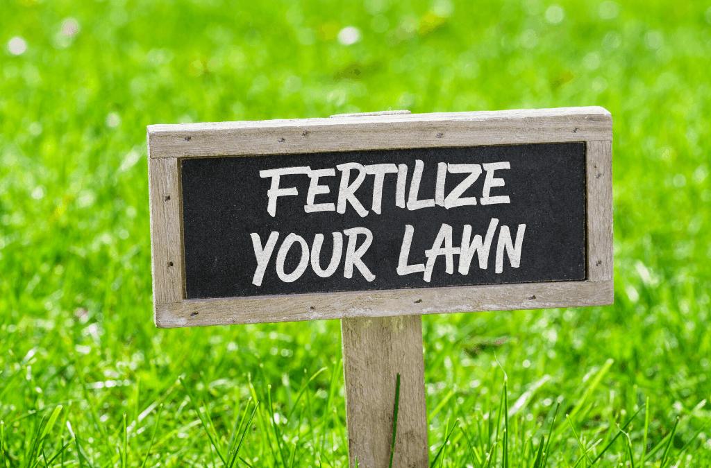 The Best Lawn Fertilizer