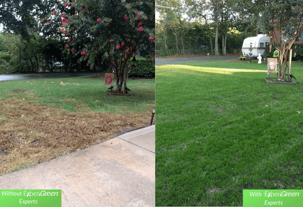 Before and After ExperiGreen Lawn Care
