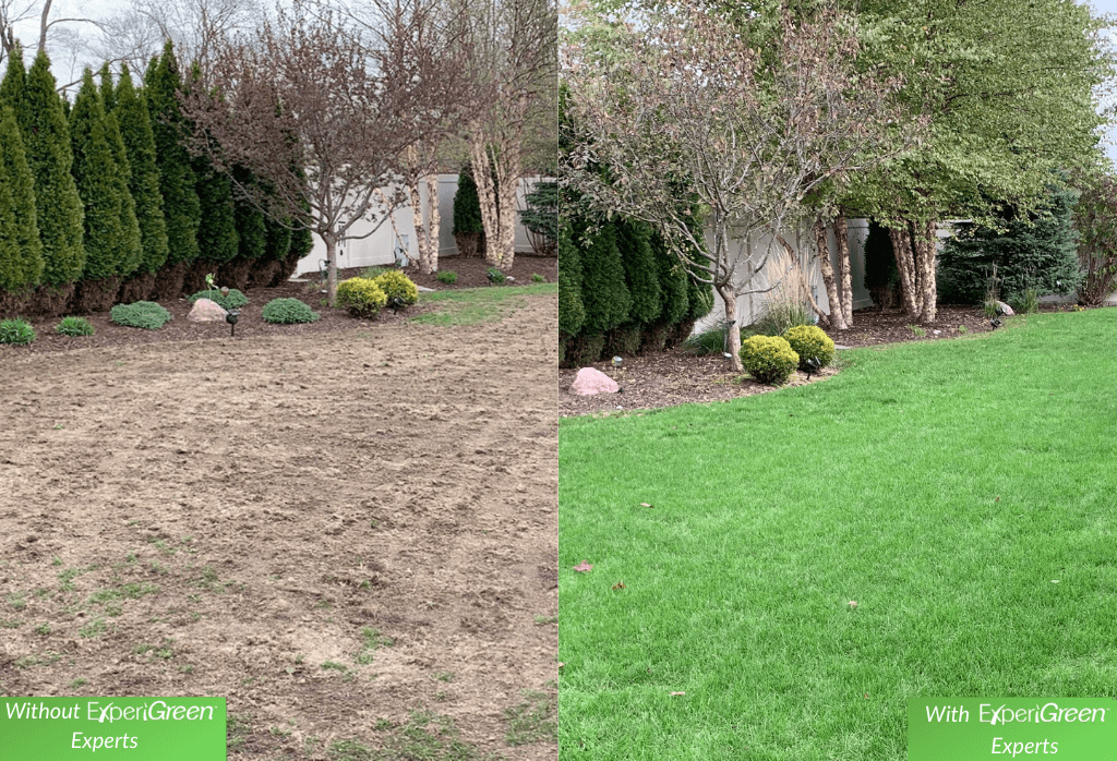 Before and After ExperiGreen Service