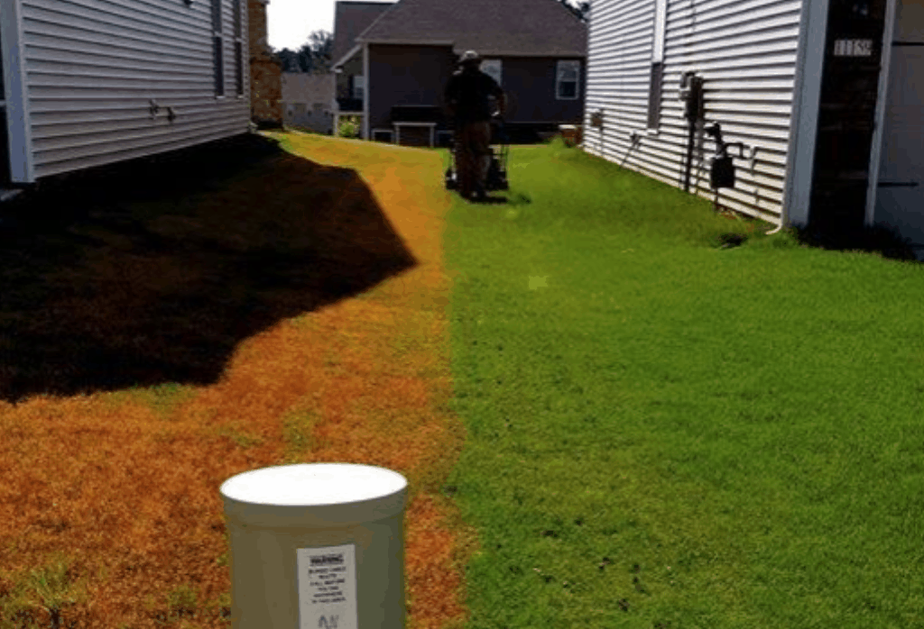 Charlotte Lawn Care Before and After