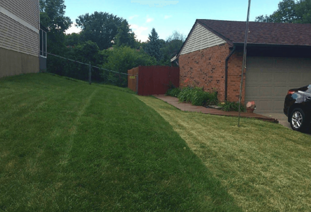 Indy Lawn Before and After