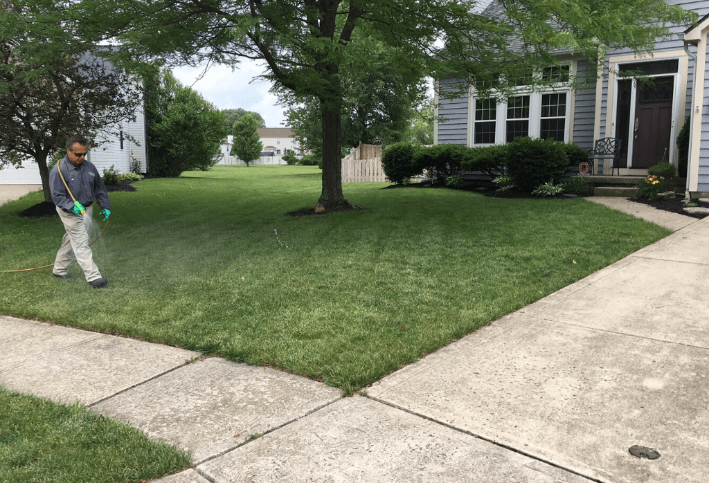 Lawn Care Columbus Ohio