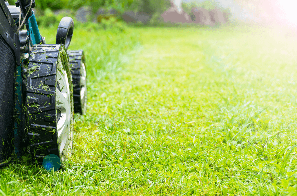 How To Start Mowing In Spring