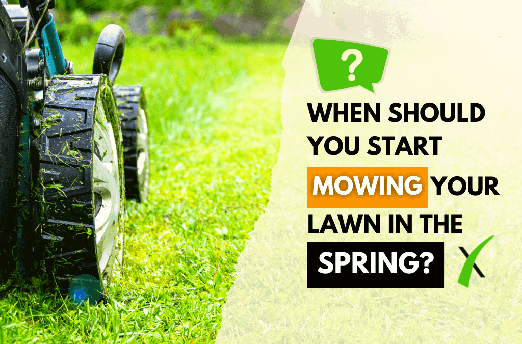 When to Start Mowing in Spring