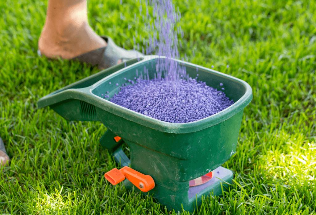 Best Lawn Fertilizer For Summer