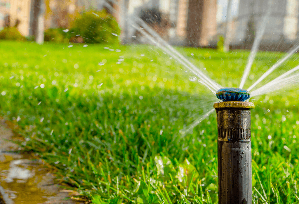 Watering Your Lawn With Sprinklers This Summer