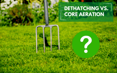 Dethatching vs. Core Aeration