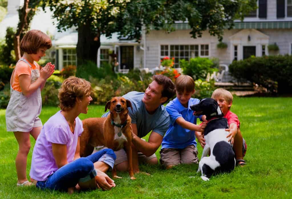 ExperiGreen Lawn Care Tinley Park Illinois