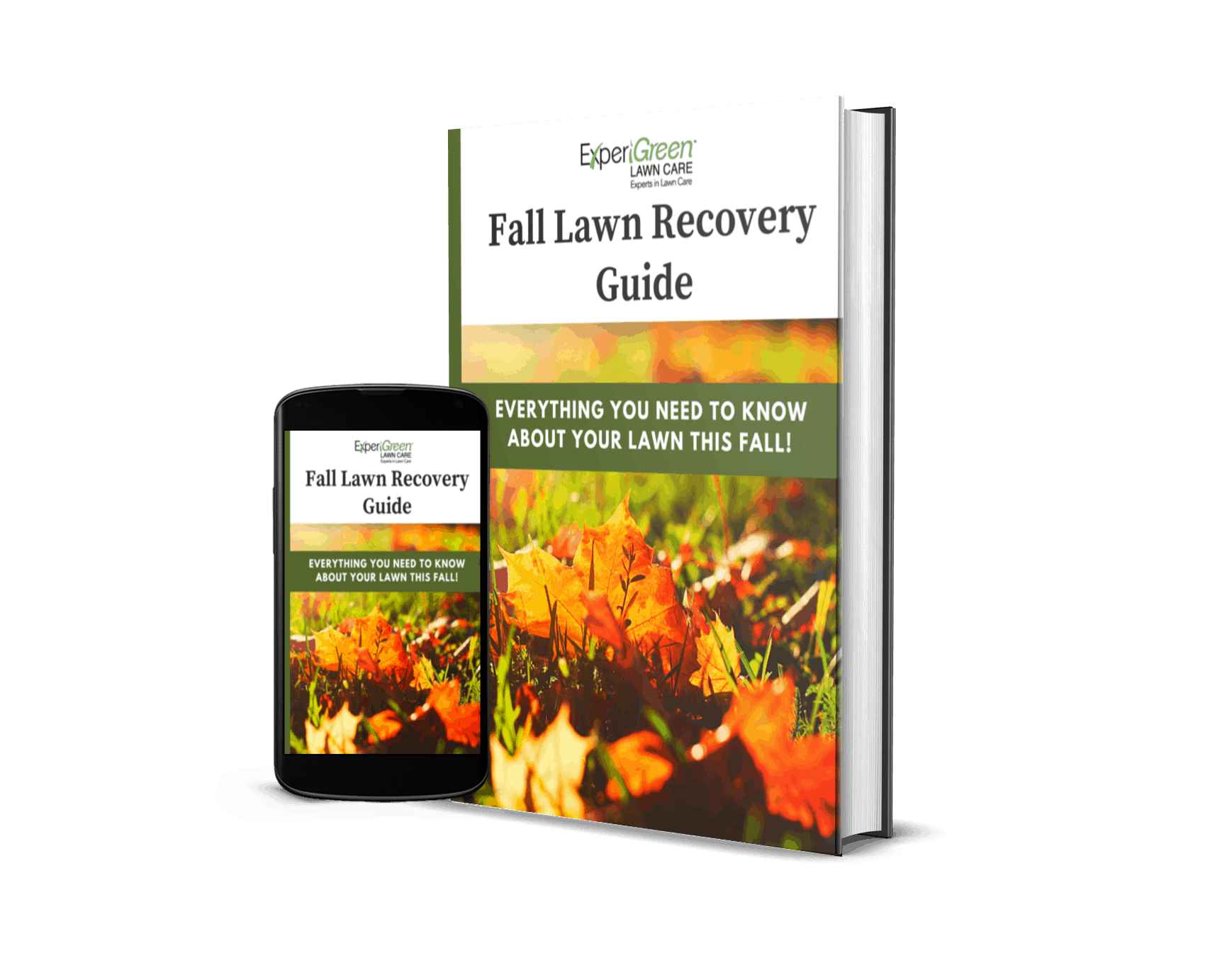 Fall Lawn Recovery Guide Website Free EBook