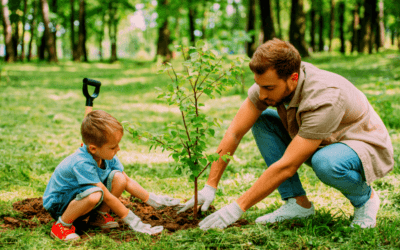 Fall Tree Shrub Planting Tips