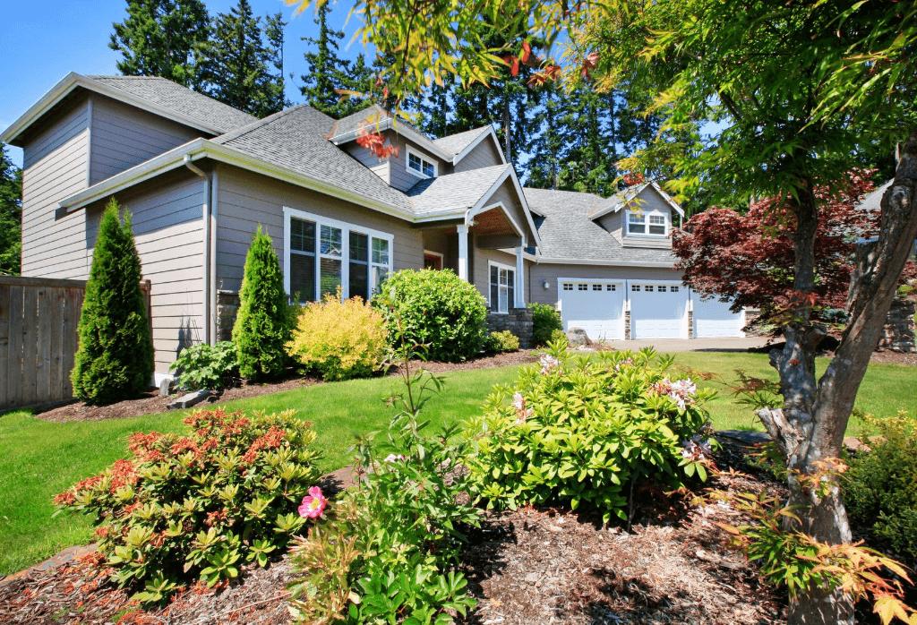 Fall Tree and Shrub Planting Tips