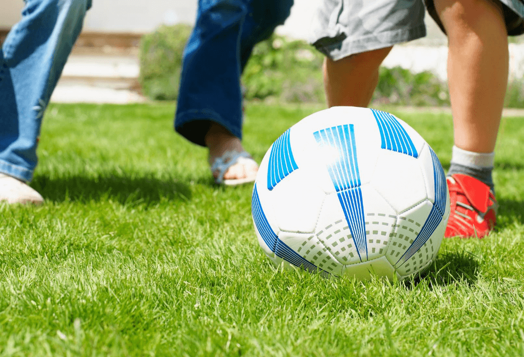 Sports Grass Lawn
