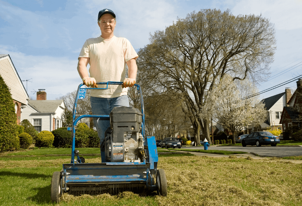 Dethatching your lawn
