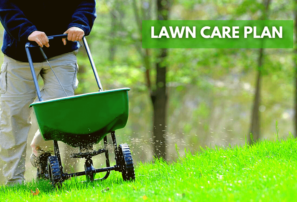 Fall Healthy Lawn Activities