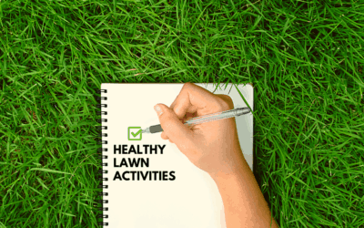 Healthy Lawn Activities