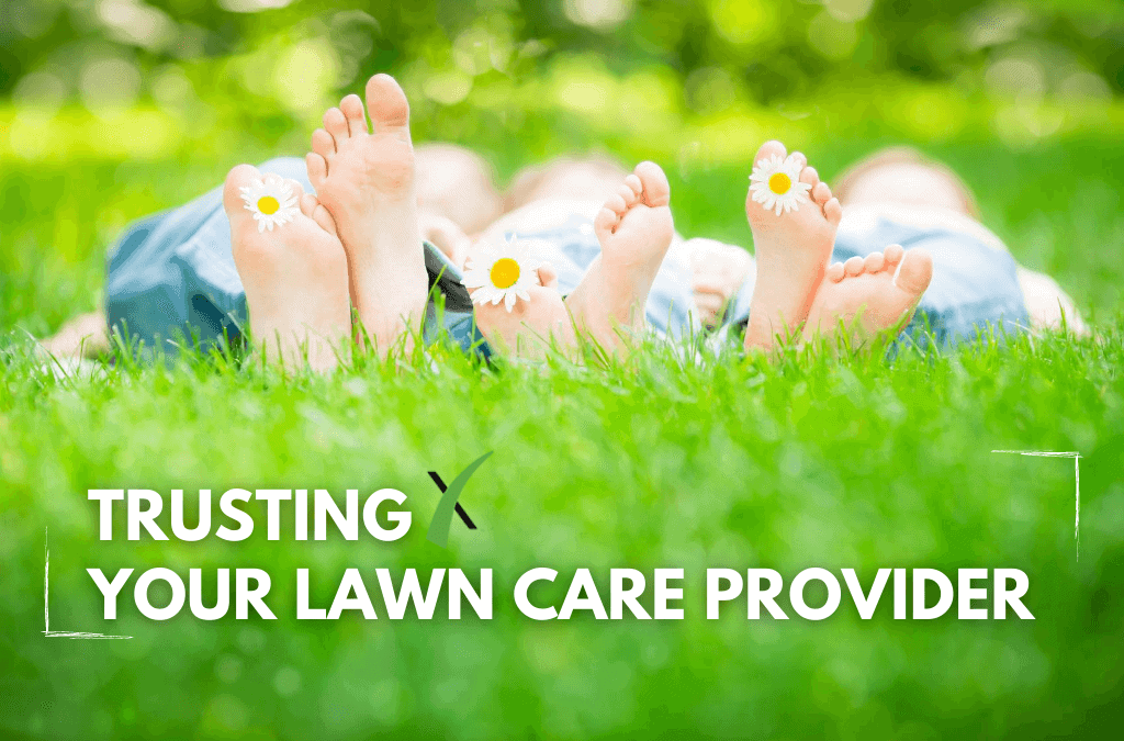 Trusting Your Lawn Care Provider