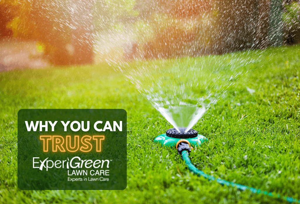 Why You Can Trust ExperiGreen As Your Lawn Care Provider