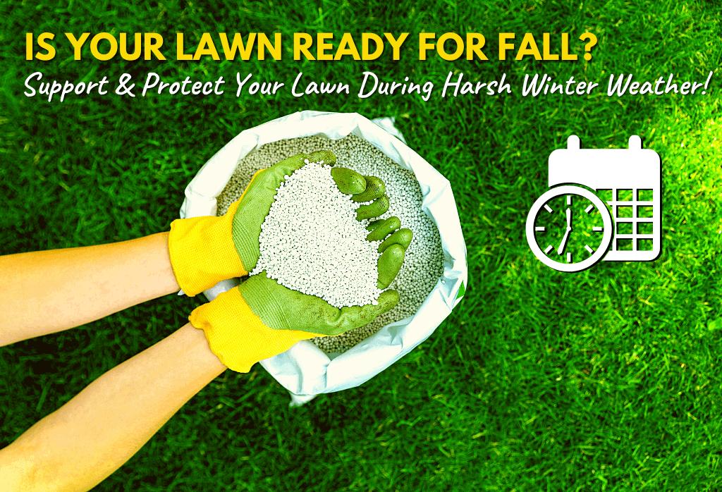 Best Winterizer Lawn Fertilizer Application