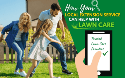 How Your Local Extension Service Can Help with Lawn Care