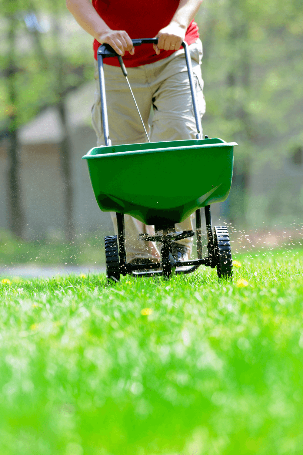 How to read a lawn fertilizer label