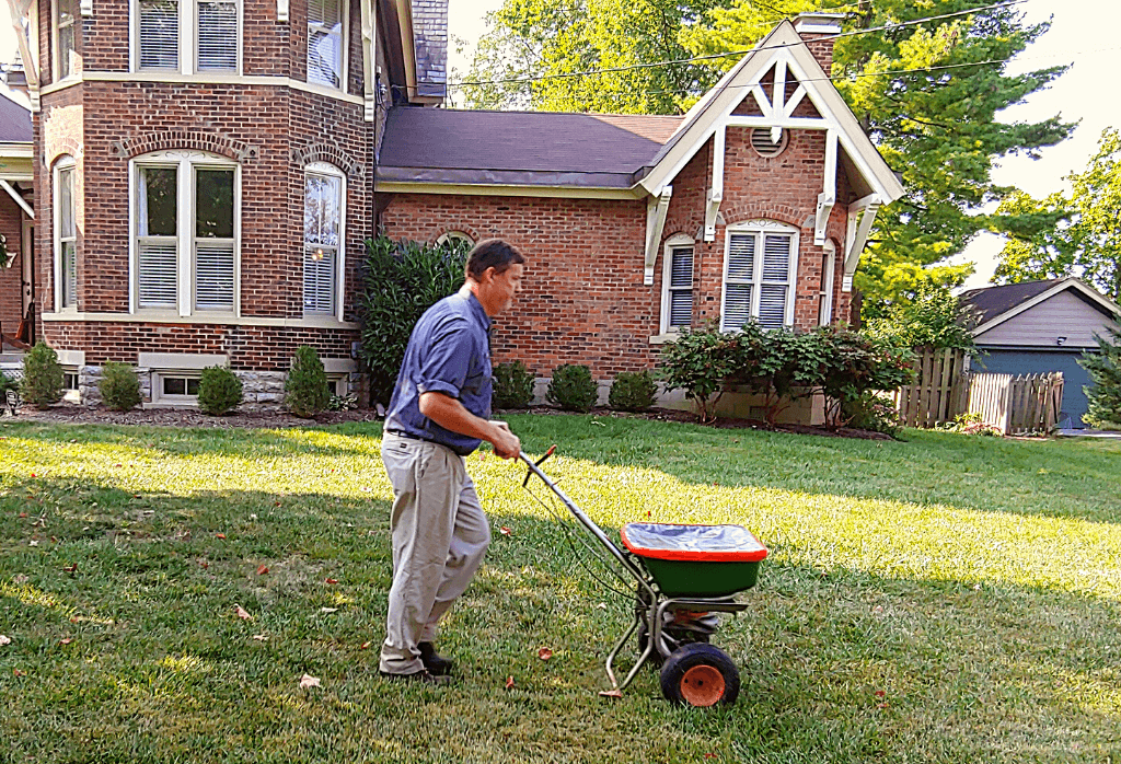 Late Fall Winterizer for Lawns