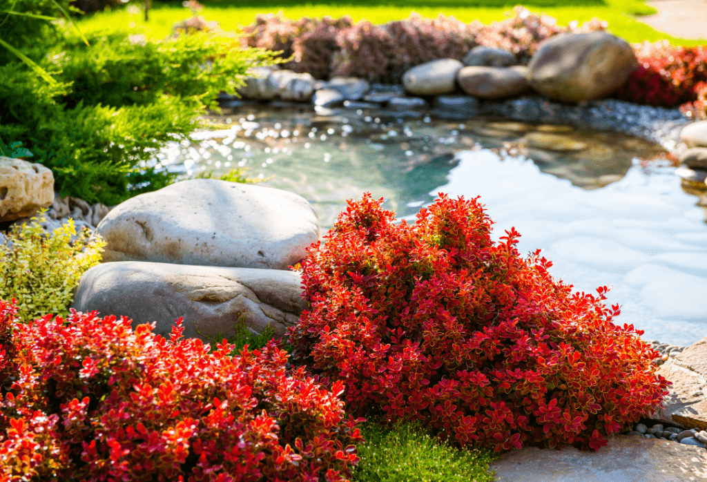Simple But Effective Fall Front Yard Landscaping Ideas