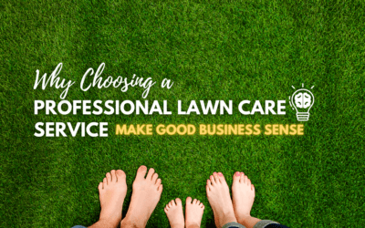 Why Choosing A Professional Lawn Care Service Make Sense