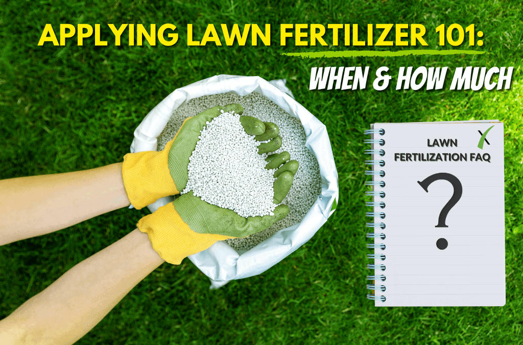 How Much Fertilizer Does My Lawn Need?