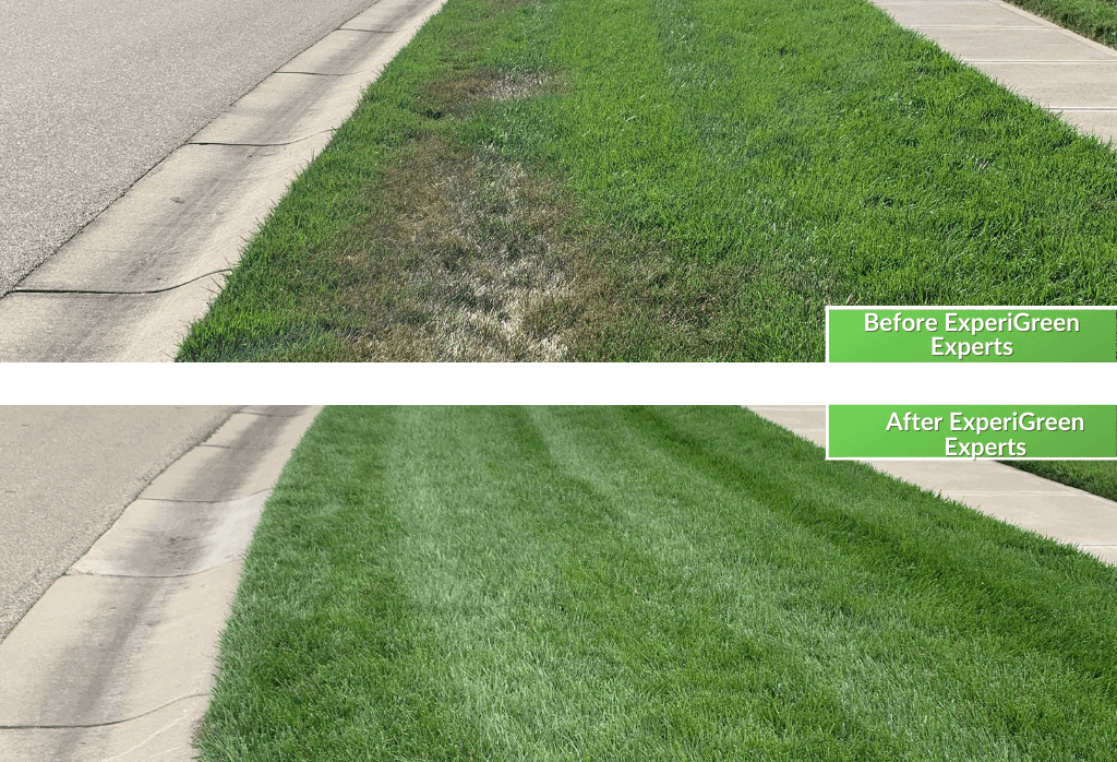 Lawn Care Service Before & After Cincinnati Ohio