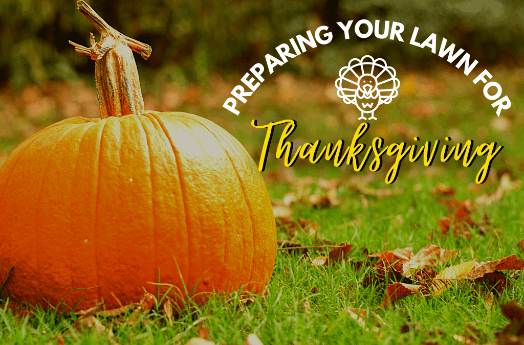 Preparing Your Lawn for Thanksgiving
