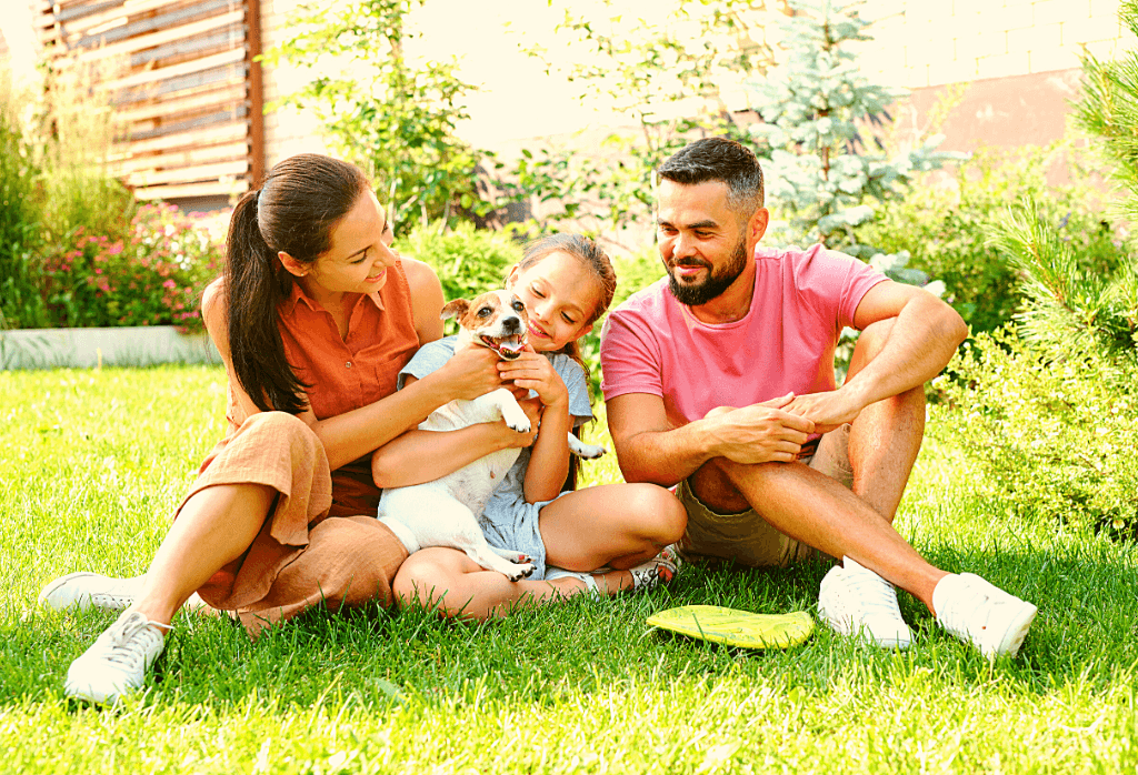 What to expect from a lawn care service
