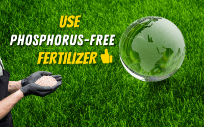 Why Phosphorus Has Been Banned In Turf Fertilizers