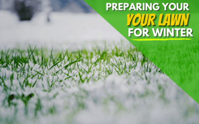 How To Prepare Your Lawn The For Winter Season