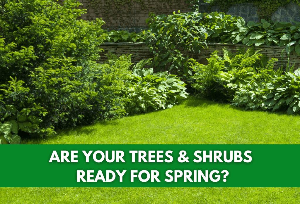 Spring 2021 ExperiGreen Tree & Shrubs