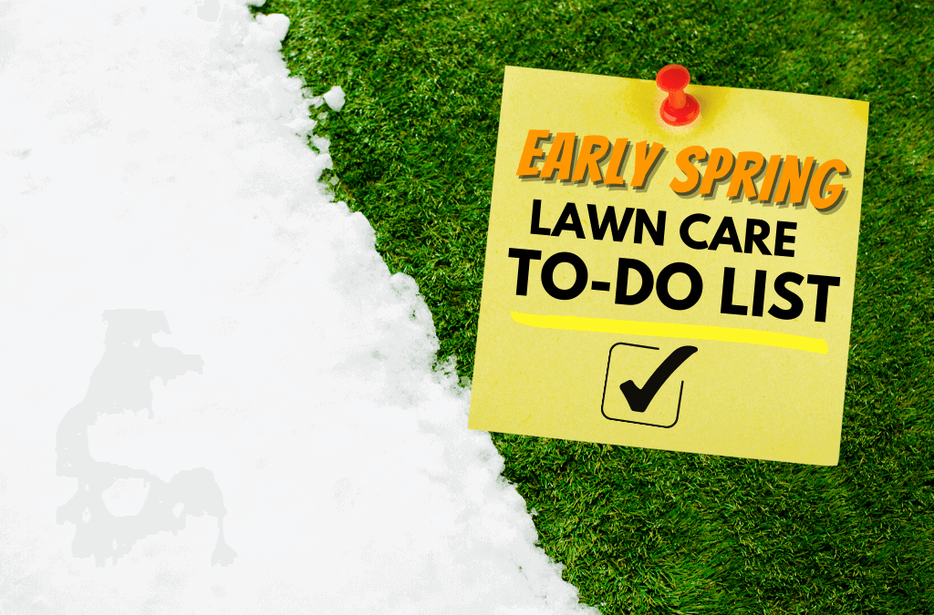 Early Spring Lawn Care To-Do List