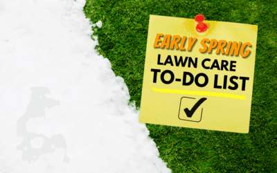 Early Spring Lawn Care To Do List