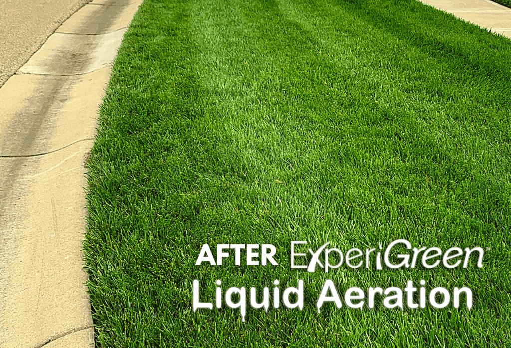 After ExperiGreen Liquid Aeration