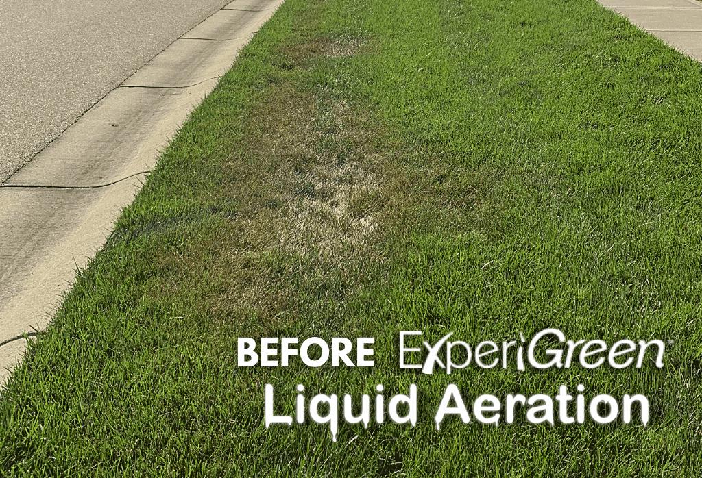 Before ExperiGreen Liquid Aeration