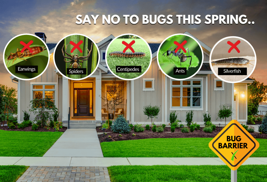 ExperiGreen's Perimeter Pest Control Spring 2021 Offer