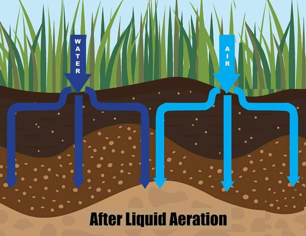Liquid Aeration ExperiGreen